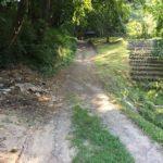 Felújítják az Arborétumba vezető útszakaszt