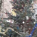 Kenderföldön is áll karácsonyfa